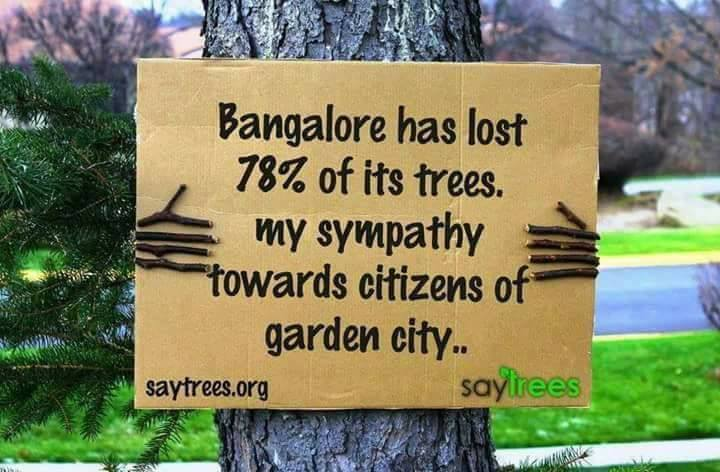 Trees are Life...Spread the word...This Needs Attention (10 Pics)