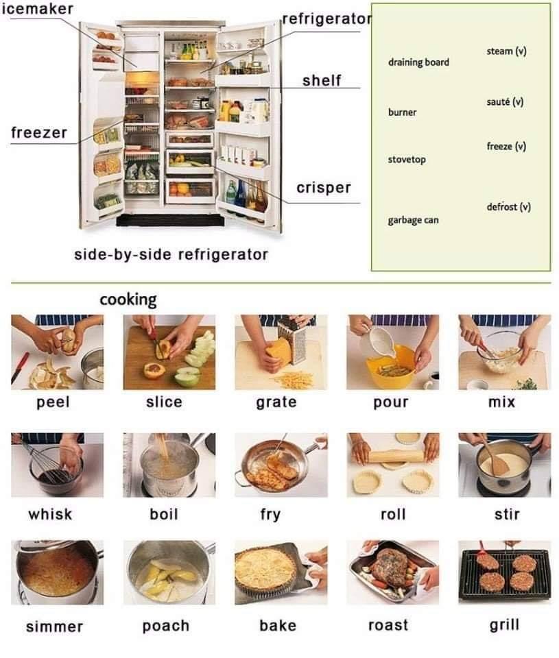 Some useful vocabulary