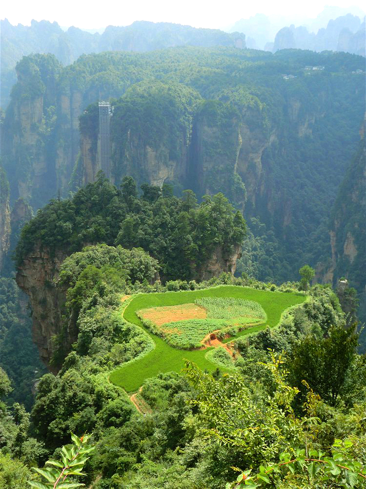 The idyllic hanging garden near Tianzi Mountain Nature Reserve