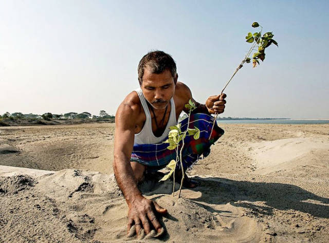 The Forest Man Of India: This Man Transformed Desert Into A Forest In 39 Years